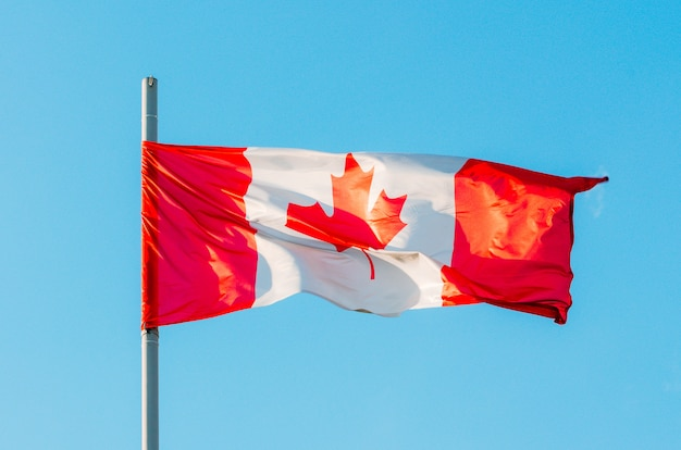 Waving colorful canada flag on blue sky.