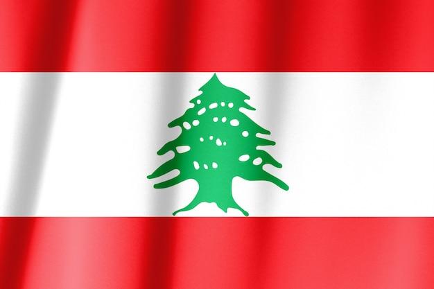 레바논과 오스트리아의 깃발을 흔들며