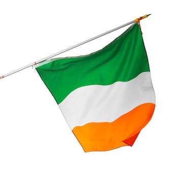 흰색 배경에 고립 된 아일랜드의 국기를 흔들며