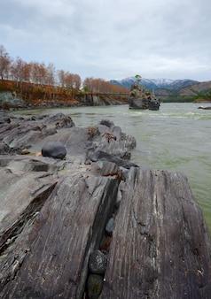 Волнистые слоистые черные скалы на скалистом берегу реки скала с сосной