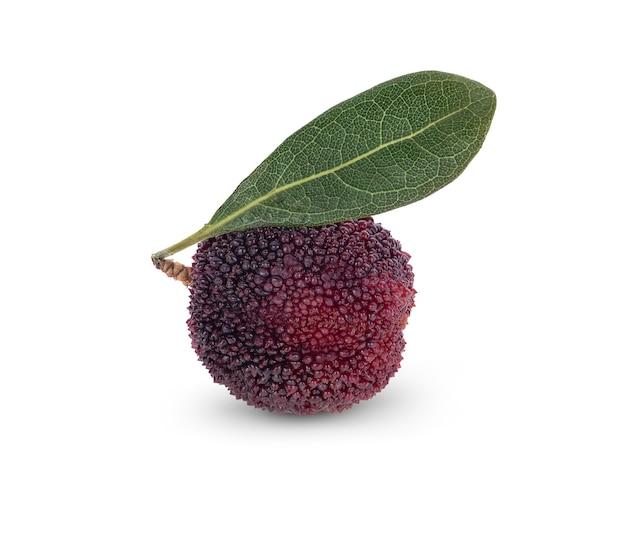 Waxberry, изолированные на белом фоне