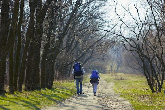 2つの愛する心の道。晴れた日に木の近くの緑の芝生を歩いて観光服の男女の老家族カップル。観光、健康的なライフスタイル、リラクゼーションと一体感の概念。