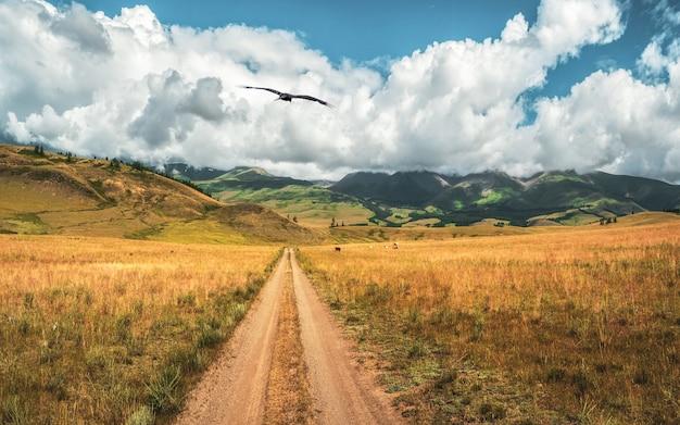 Путь через горы. поход по горной тропе. яркий атмосферный минималистский альпийский пейзаж с каменистой тропинкой среди трав в высокогорье. путь в гору. путь вверх по склону горы.