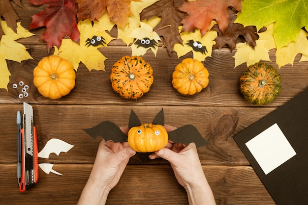 We make gifts for halloween. making a funny bat out of a small yellow pumpkin. halloween party decor. diy instruction. step by step guide. ready.