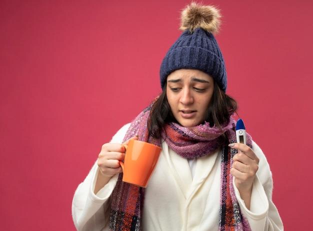 Debole giovane ragazza malata caucasica che indossa abito invernale cappello e sciarpa che tiene tazza di tè e termometro guardando all'interno della tazza isolata sulla parete cremisi con lo spazio della copia