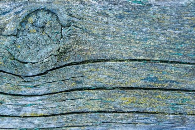 テクスチャーと風化した緑の木の背景。古い塗られた木の質感。木の表面をクローズアップ。