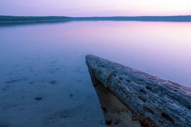 黄昏の湖の水に沈んだ風化した木の幹