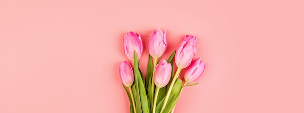 Web banner with pink tulips