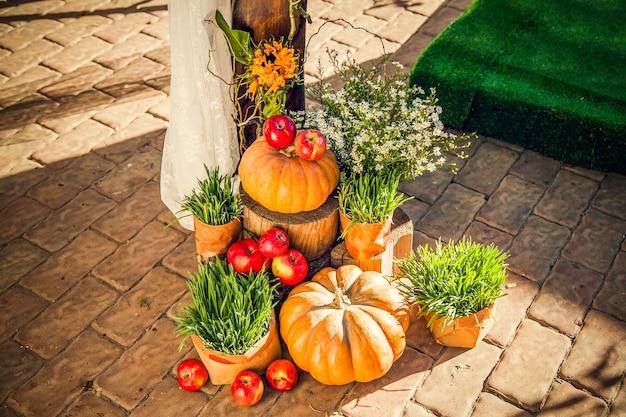 Свадебная арка для выездной свадебной церемонии, оформленная в осенней тематике с тыквами.