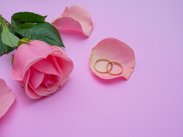 Wedding concept. beautiful pink rose on pink background with two wedding rings. copy space.