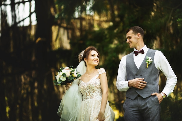 A wedding couple enjoys walking in the woods. newlyweds hug and hold hands