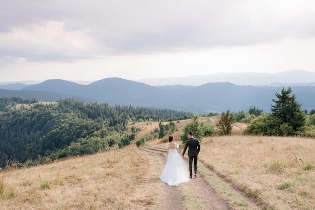 Свадебная пара в горах на дороге, вид сзади свадебной пары гуляет в горах