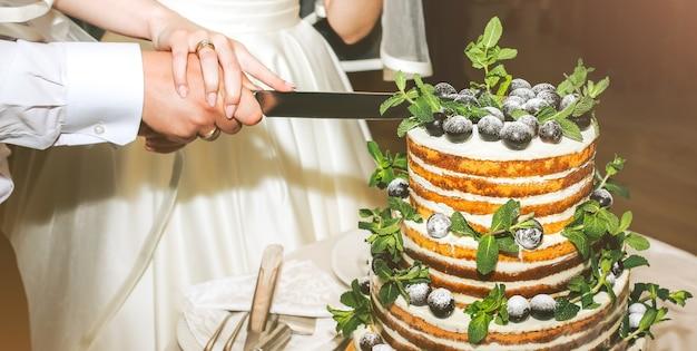 結婚式のカップルは、モダンな素朴なケーキをカットしています。ミントの葉と新鮮なフルーツのブドウを上に乗せたオープンスポンジデザート。自由奔放に生きるウエディングケーキ。黒のスーツを着た新郎と白のエレガントなドレスを着た花嫁。
