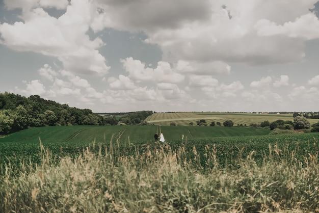 Свадебная пара влюбленных посреди большого зеленого холмистого поля летом в солнечную погоду