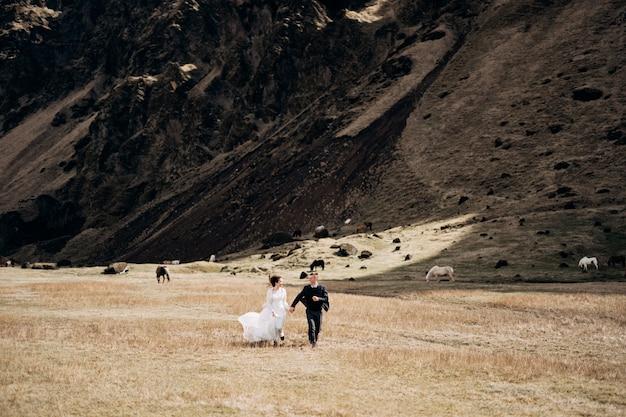 岩山を背景に結婚式のカップルとアイスランドの放牧馬花嫁と