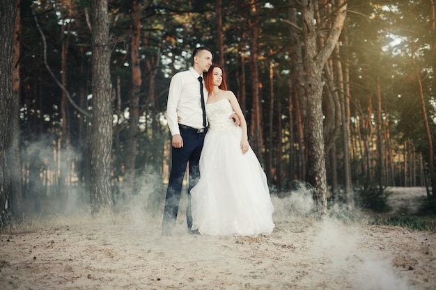 Wedding day. the groom embraces the bride, loving couple in a pine forest.