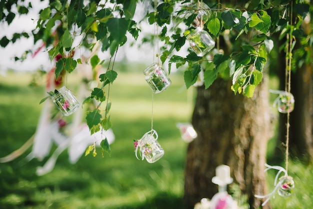 Wedding decor jars with flowers hanging on the ropes on the branches of a birch in summer