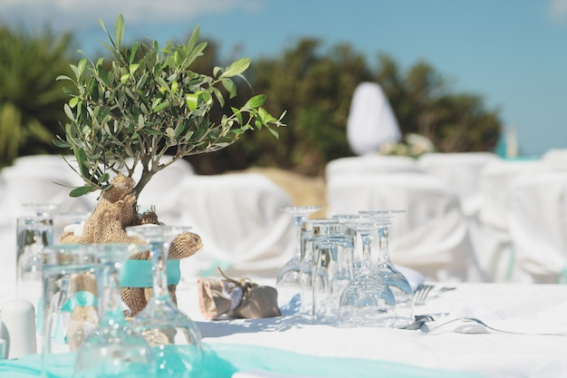 Wedding decoration.small olive tree and tableware.mint color.