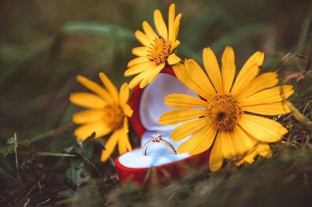 結婚式の詳細-幸せな生活の象徴としての結婚指輪