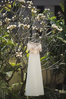 Свадебное платье висит на дереве