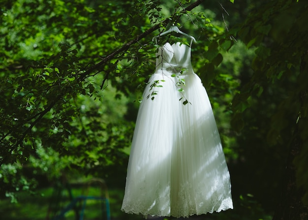 Wedding dress hanging on a tree in the park