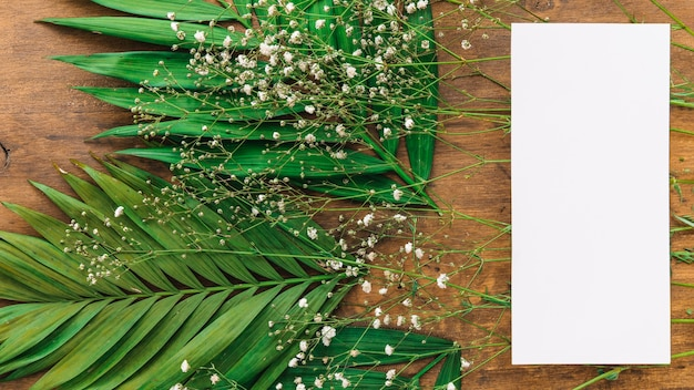 Wedding menu concept with leaves