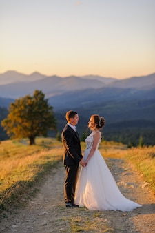 Wedding photography in the mountains. the bride and groom hold hand on the background of the old 100 year old beech. sunset.