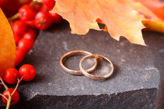 Wedding rings  on autumn background