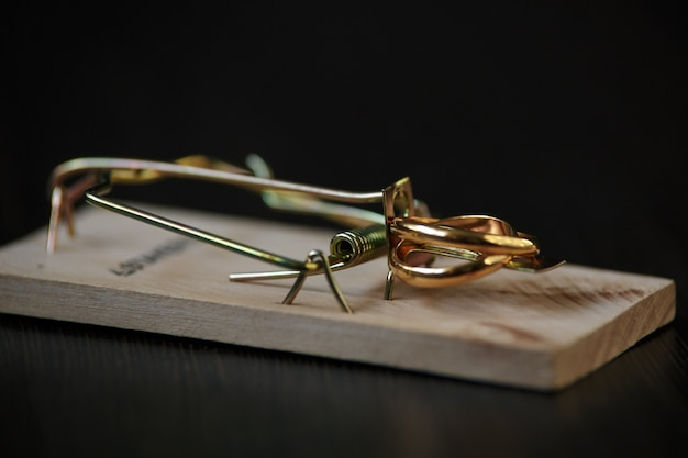 Wedding rings bait in a mousetrap, concept marriage of convenience, contract.
