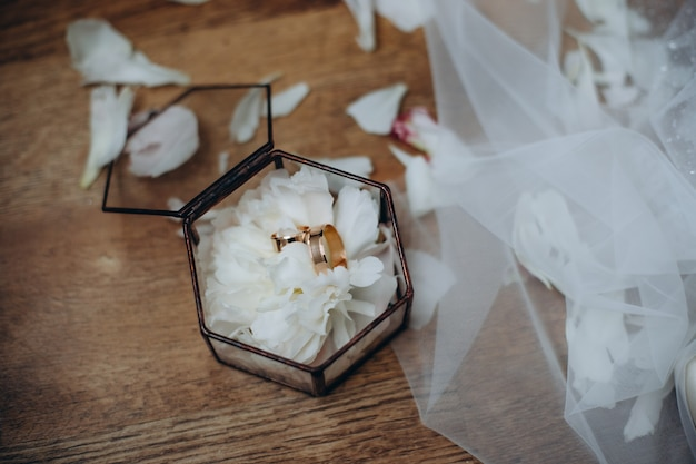Wedding rings of the bride and groom are in a glass box on the succulent, the box is on the table in the bride's room.