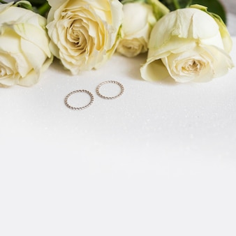 Wedding rings and fresh roses on white background
