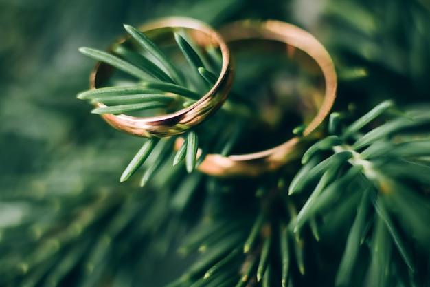 結婚指輪。ホワイトとイエローゴールドのジュエリー。緑の結婚指輪