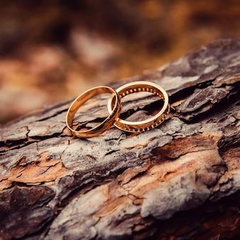 결혼 반지. 화이트 골드와 옐로우 골드 주얼리. 나무 질감에 결혼 반지입니다. 나무 그루터기