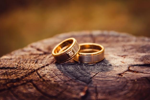 결혼 반지. 화이트와 옐로우 골드 쥬얼리. 나무 질감에 결혼 반지입니다. 나무 그루터기