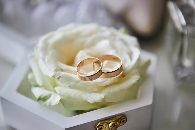 Обручальные кольца лежат в коробке