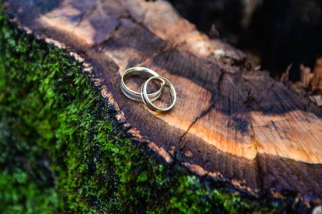結婚指輪は木の切り株にあります