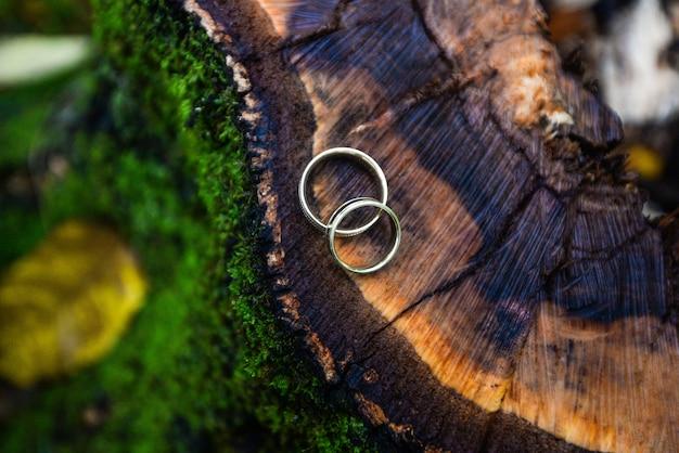 Обручальные кольца лежат на деревянном пне