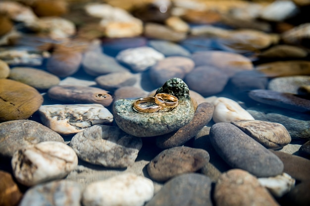 Wedding rings lie on the sea rock on water background
