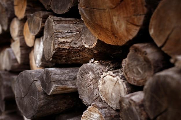 Wedding rings on logs.