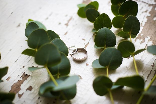 古いユーカリの小枝と白いテーブルの上の結婚指輪、クローズアップ
