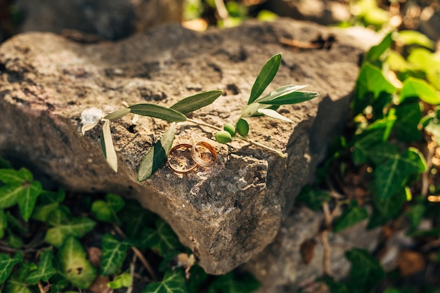 芝生の石の結婚指輪