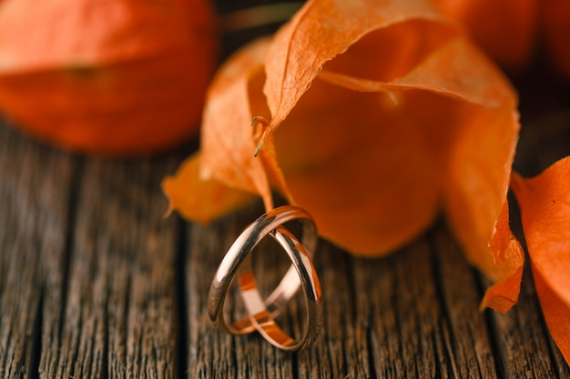 Wedding rings on red autumn leaves