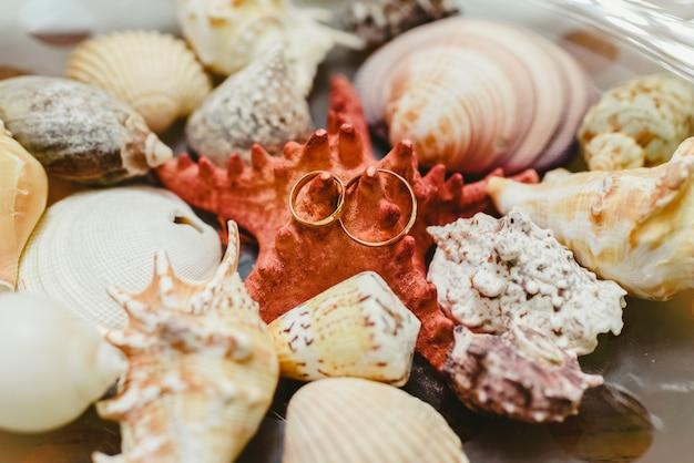 Обручальные кольца в окружении ракушек, оформлены в морской тематике.