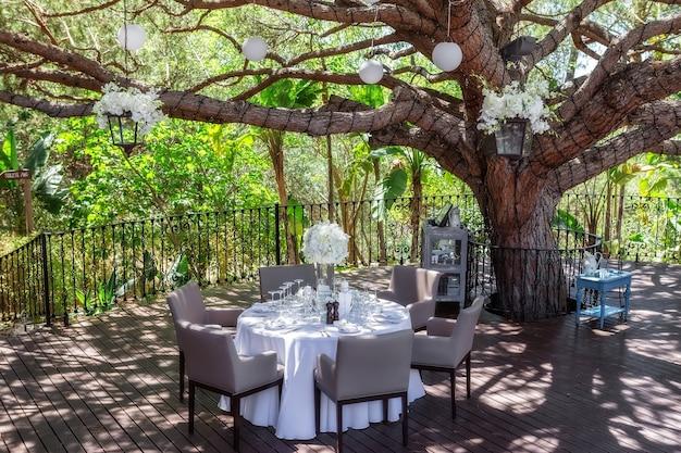 나무 아래 정원에서 웨딩 테이블입니다.