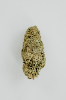 Weed isolated on a blank background