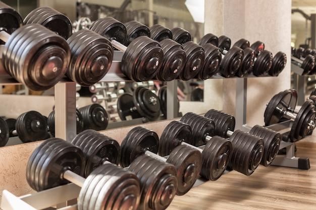Weights are in a row in the gym
