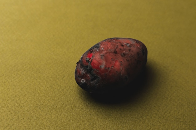 The weird organic ugly mutant red potato jagged with insect bites soured and turned black