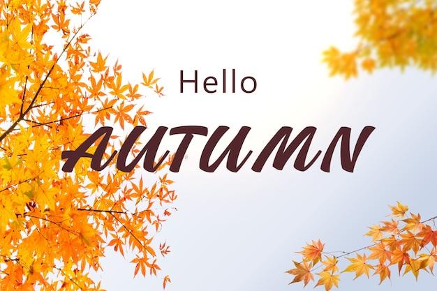 노란색과 주황색으로 된 환영 가을 삽화