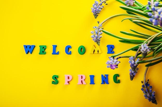 花と春のテキストへようこそ