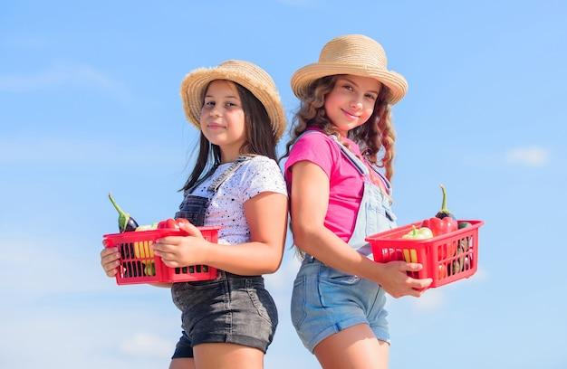 우리의 세계에 오신 것을 환영합니다. 건강한 음식 행복한 삶. 바구니에 여자 야채입니다. 자연 만. 여름 농장에서 아이 들. 유기농 식품. 어린이 농사. 가을 수확. 수확 비타민. 봄 시장 정원.